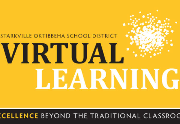 Update #17 from Supt. Eddie Peasant: Virtual Learning Guidelines for Spring 2021 Semester