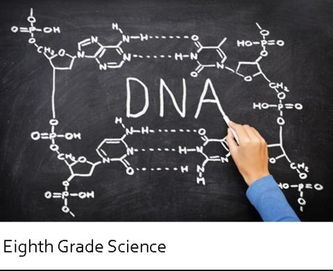 DNA word written on the board