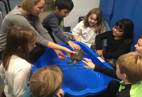 Burpee Museum  in School Field Trip image for 15
