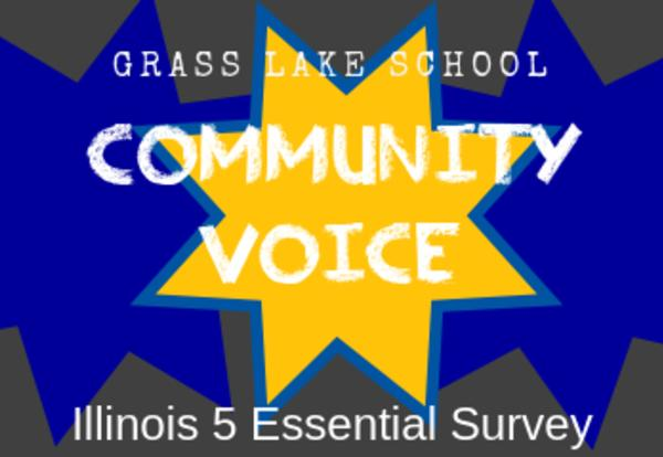 Illinois 5 Essentials Survey Information: What is it and Why is it Important?