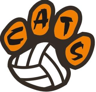 Wildcat Volleyball Logo