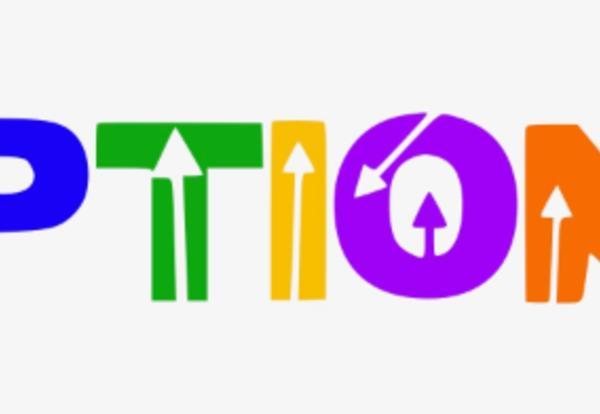 Options Fair Logo