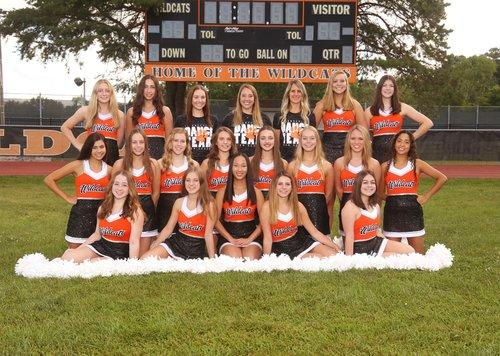 Fall Varsity Dance Team image