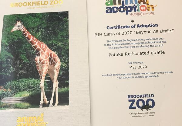 Butler Junior High Goes 'Beyond All Limits', Adopts Giraffe From Brookfield Zoo