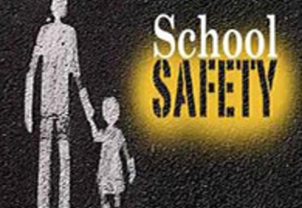 Michael Dorn - School Safety