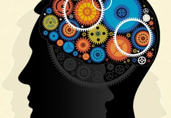 TEAMS - The Engineering Brain