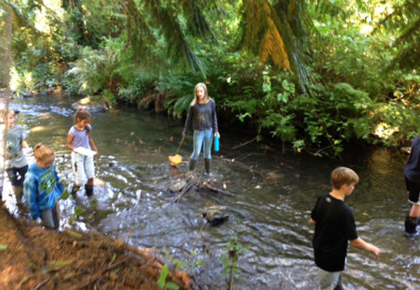 Steam in Action: 6th Graders Explore the Thornton Creek Watershed