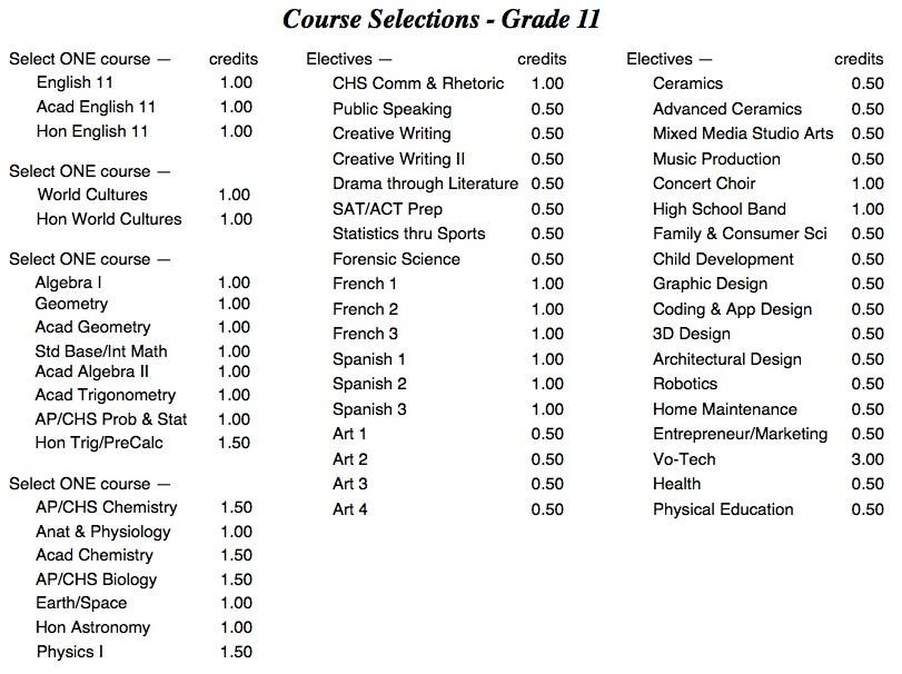 Course Selections for Grade 11