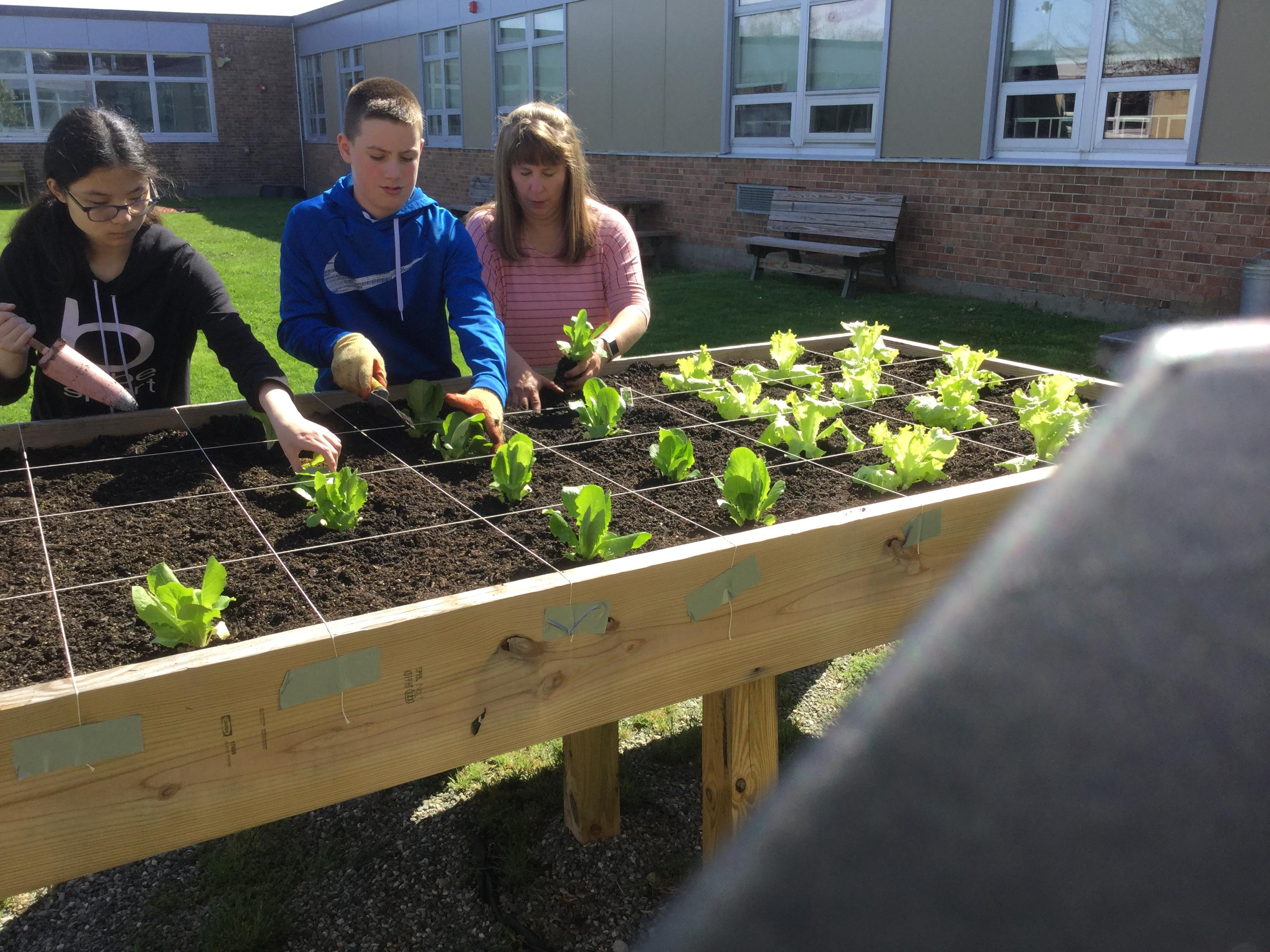 FARM TO SCHOOL PROJECT