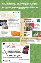 4-H SPIN (Special Interests) Clubs: Bee Keeping, Poultry, and Sewing flyer