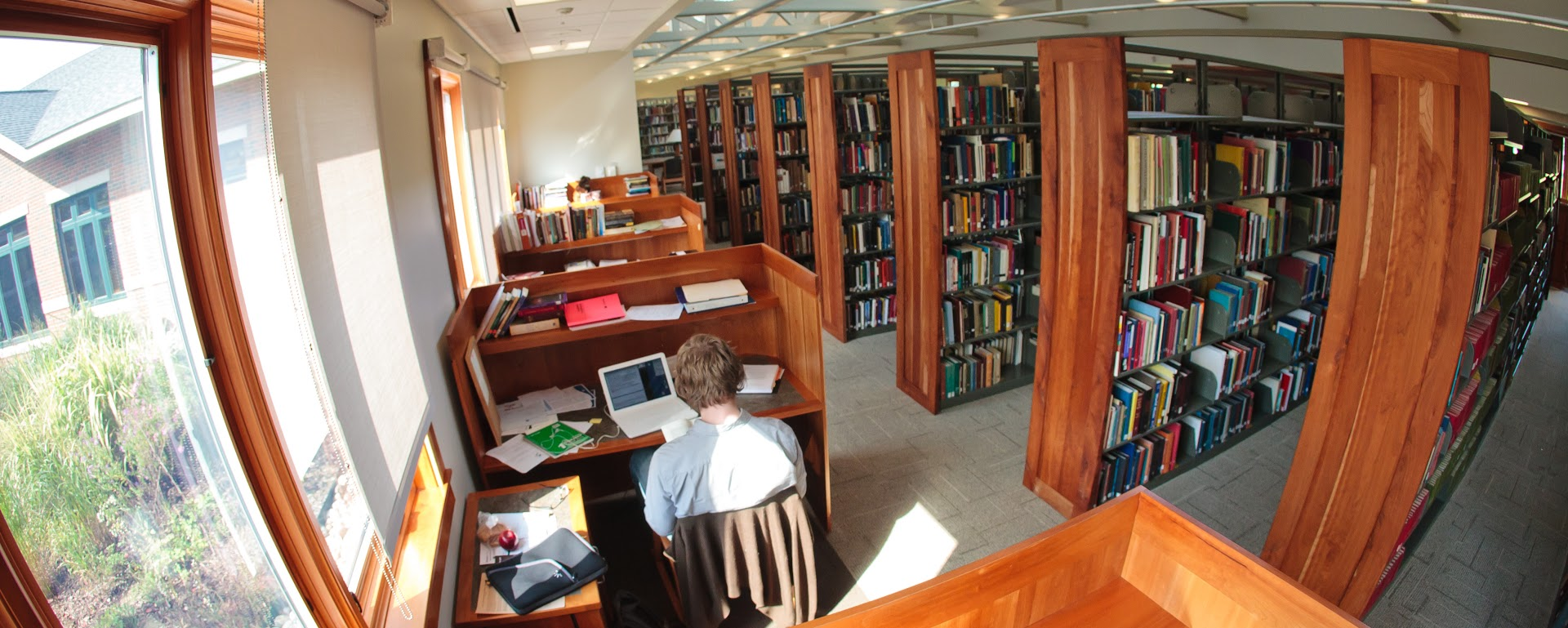 A student works in a library study carrel.