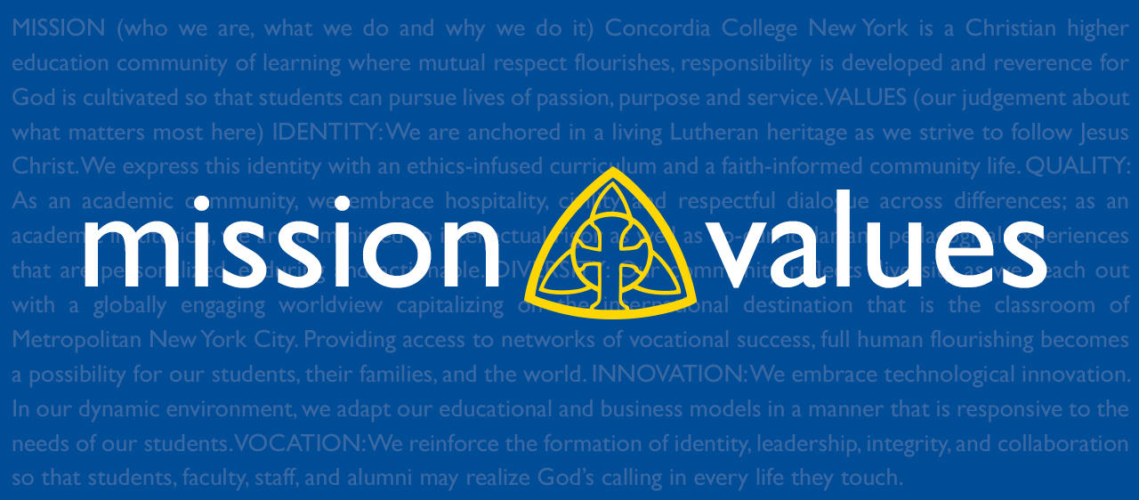 Mission and Values Header