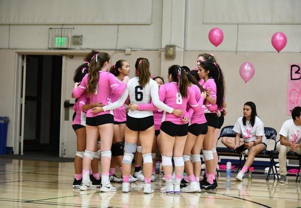 Dig Pink Raises Funds for Breast Cancer Research