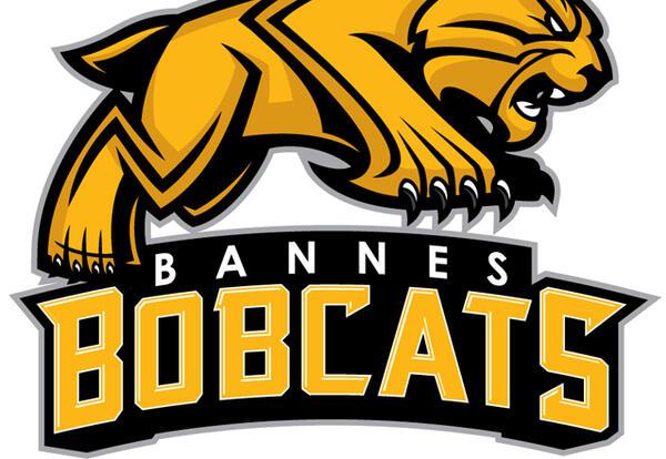 may-22-2020-bannes-logo
