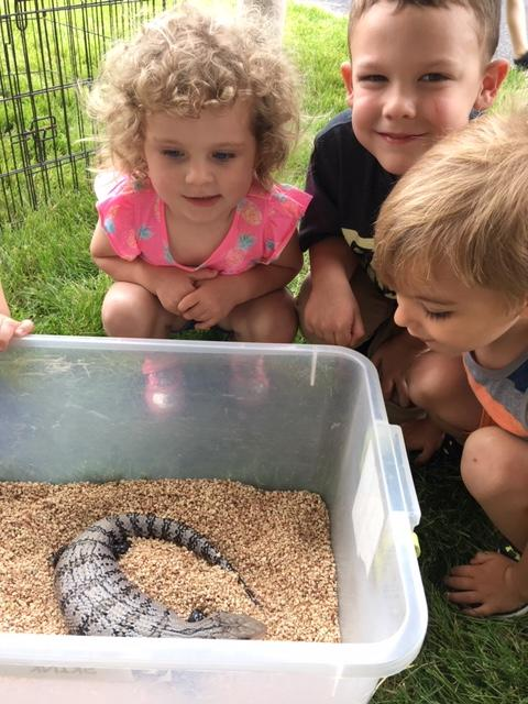 3 Lyle preschoolers with a lizard