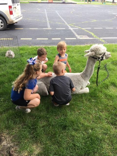 4 Lyle preschoolers with a llama