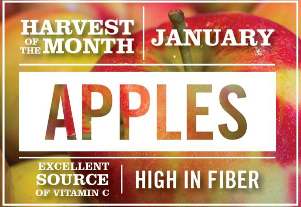 Harvest of the Month Feature - Apples