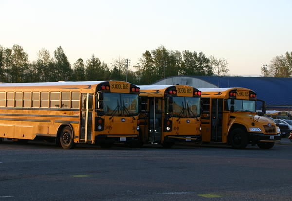 Ferndale School Buses in Transportation Bus Department Lot