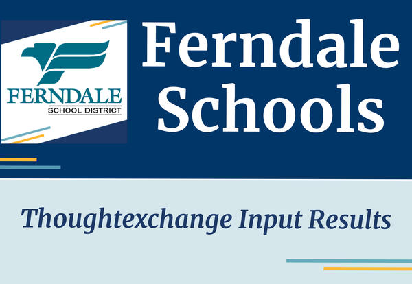 Ferndale Schools Thoughtexchange Input Results Graphic