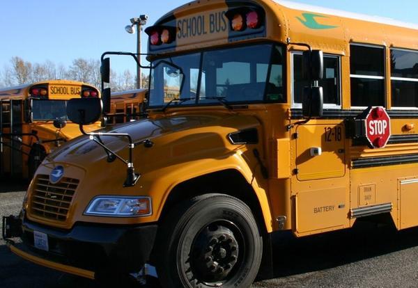 Ferndale School Bus