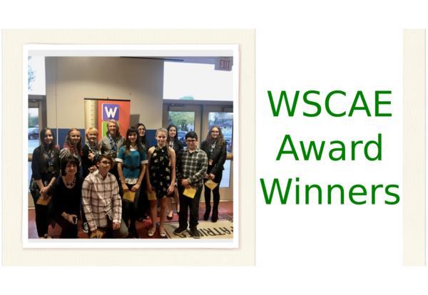 WSCAE Award Winners