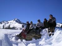 Winter Ecology