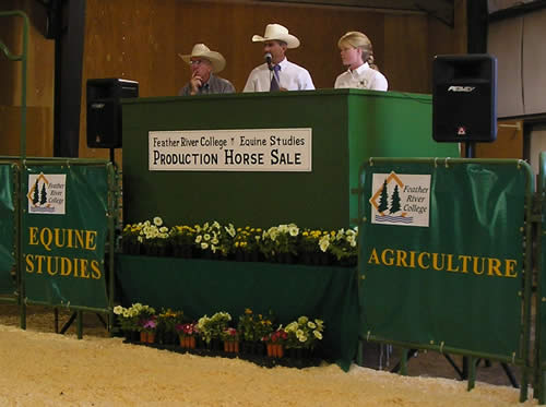 Auctioneer Eric Duarte, Commentator Mike Dean, and Crystal preparing for the first horse