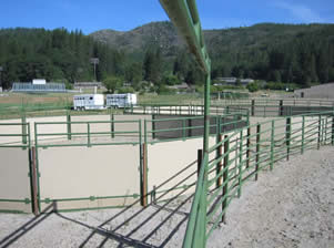 A view of two of our three round pens
