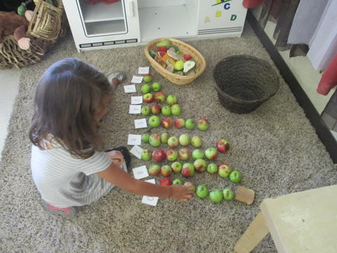 Apple Counting for number sense: authentic, hands-on, and taking advantage of resources around us.