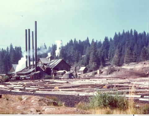 Meadow Valley saw mill c. 1949 John Adams collxn