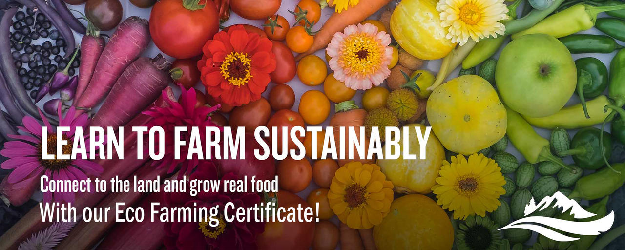 Learn to farm sustainable, learn about our Eco Farming certificate.