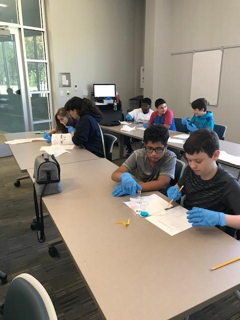 Students working in pairs, wearing blue gloves