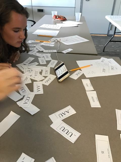 Students looking at a mixed pile of cards with letters