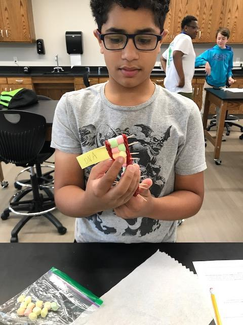 Male student holding tagged helix structure