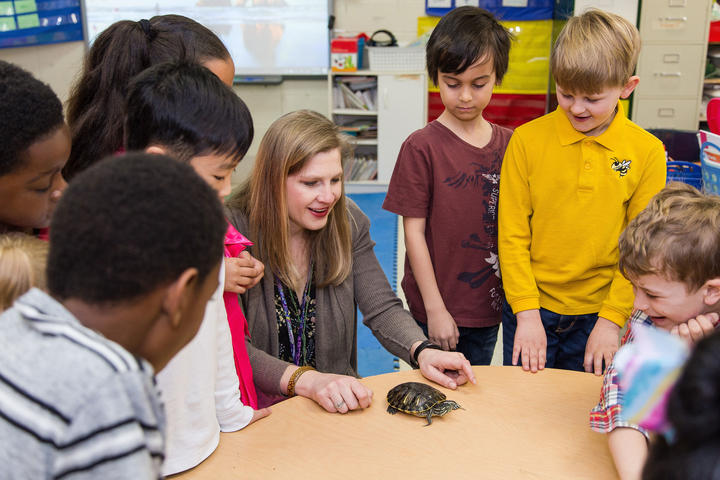 Teacher showing turtle to students