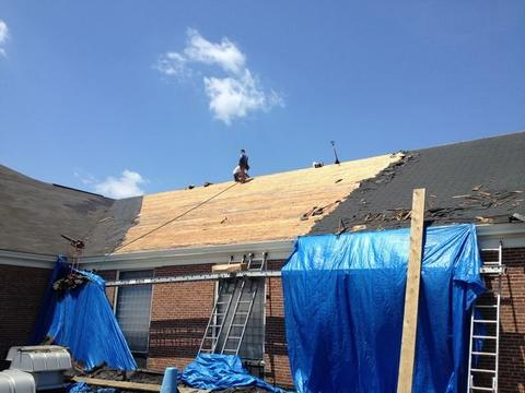 Cafeteria Shingled Roof Back 04