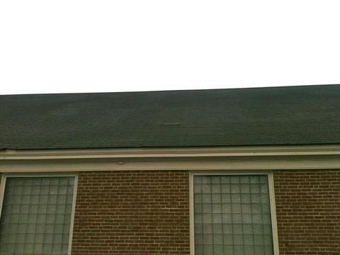 Cafeteria Shingled Roof Back 08