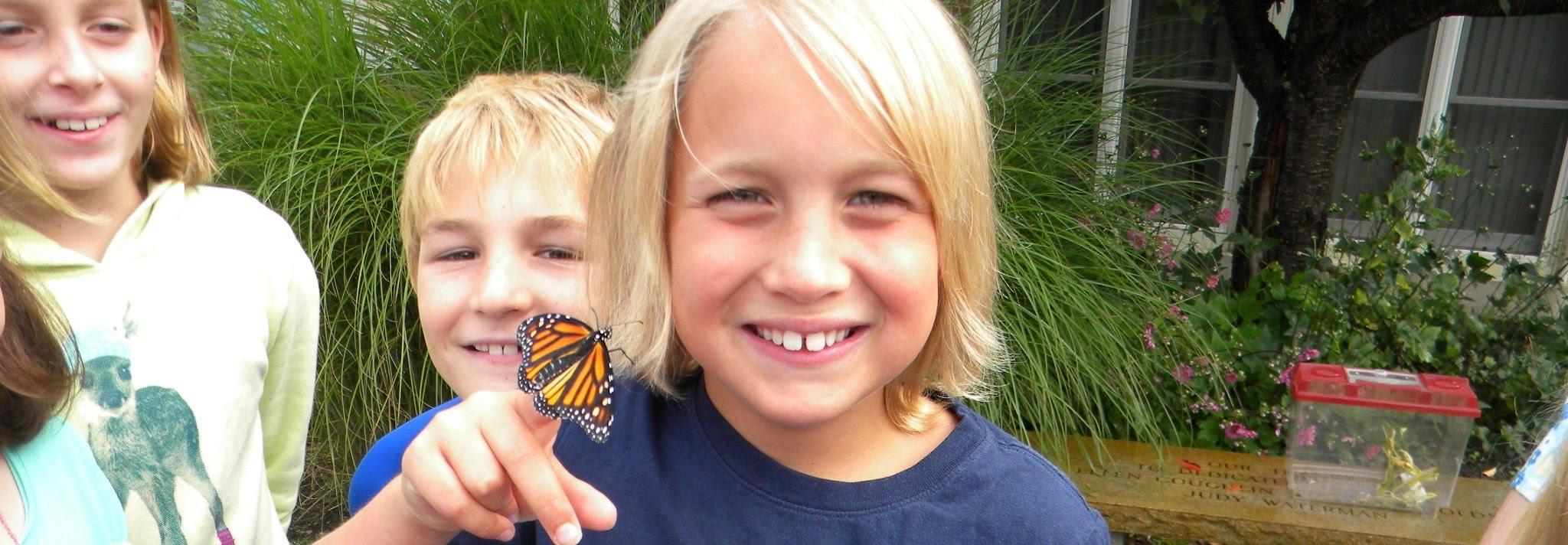 Young boy holding butterfly