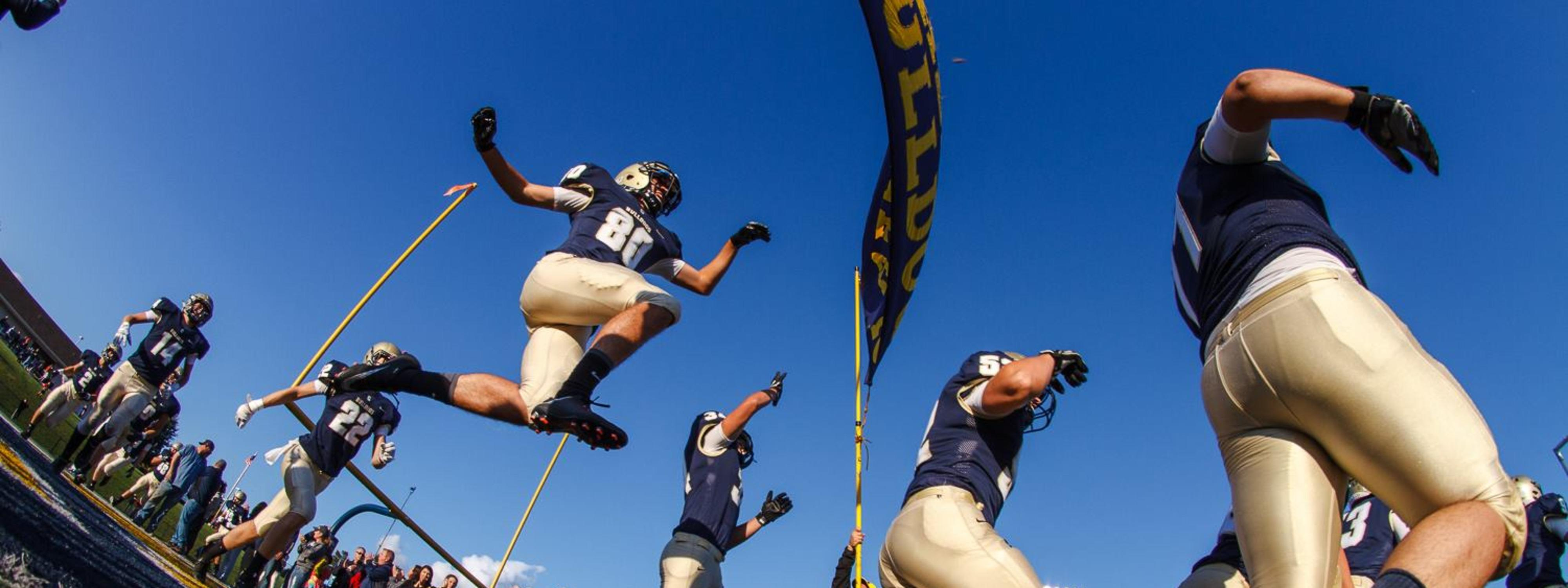 football team chelsea bulldogs jumping in air