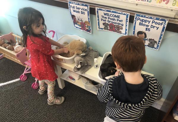 students grooming stuffed animals