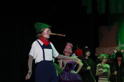 Shrek the Musical - Summer 2020 Photo # 5
