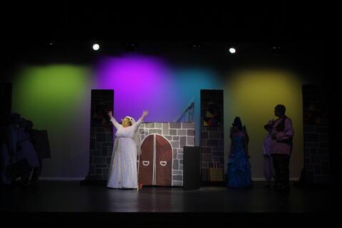 Shrek the Musical - Summer 2020 Photo # 53