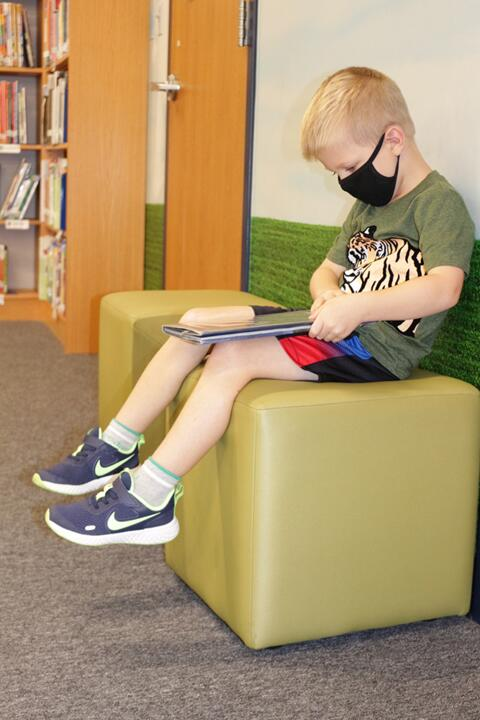 Library Lessons at Riverdale Heights (2)