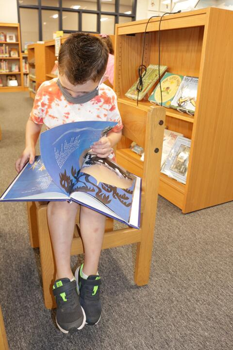 Library Lessons at Riverdale Heights (3)