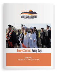 Icon of the MCSD Strategic Plan