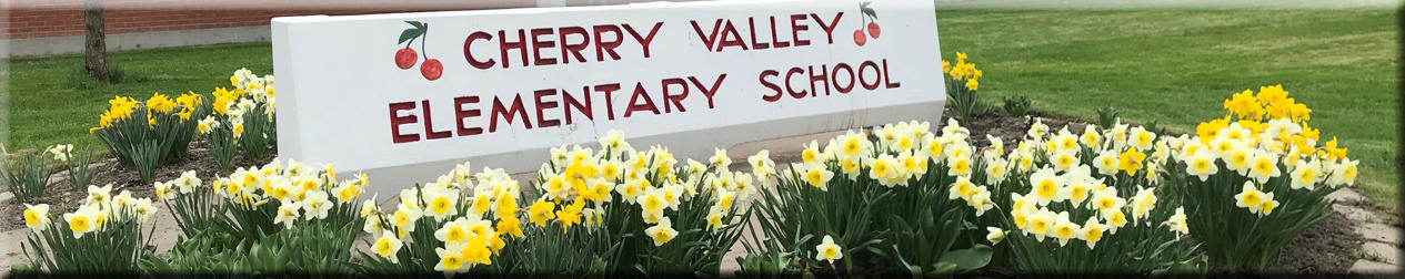 Cherry Valley front garden