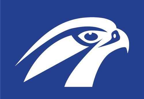 Clip Art Vector Graphics Openclipart Bald Eagle, PNG, 800x800px, Bald Eagle,  Artwork, Beak, Bird, Bird Of