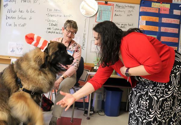 Teacher Cathleen Montimurro and Chewbacca the dog shake hands.