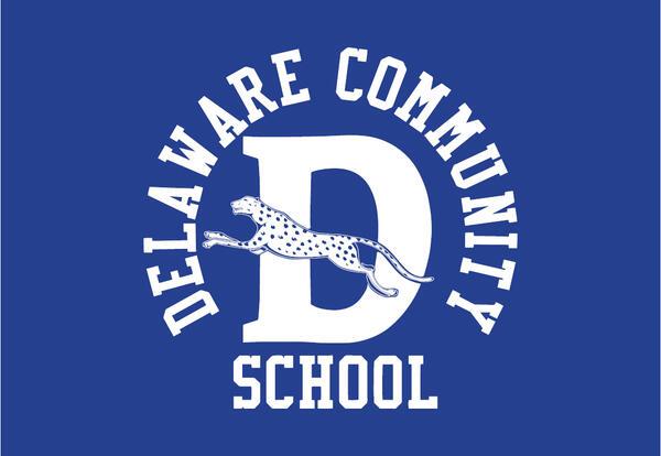 Delaware Community School and cheetah logo