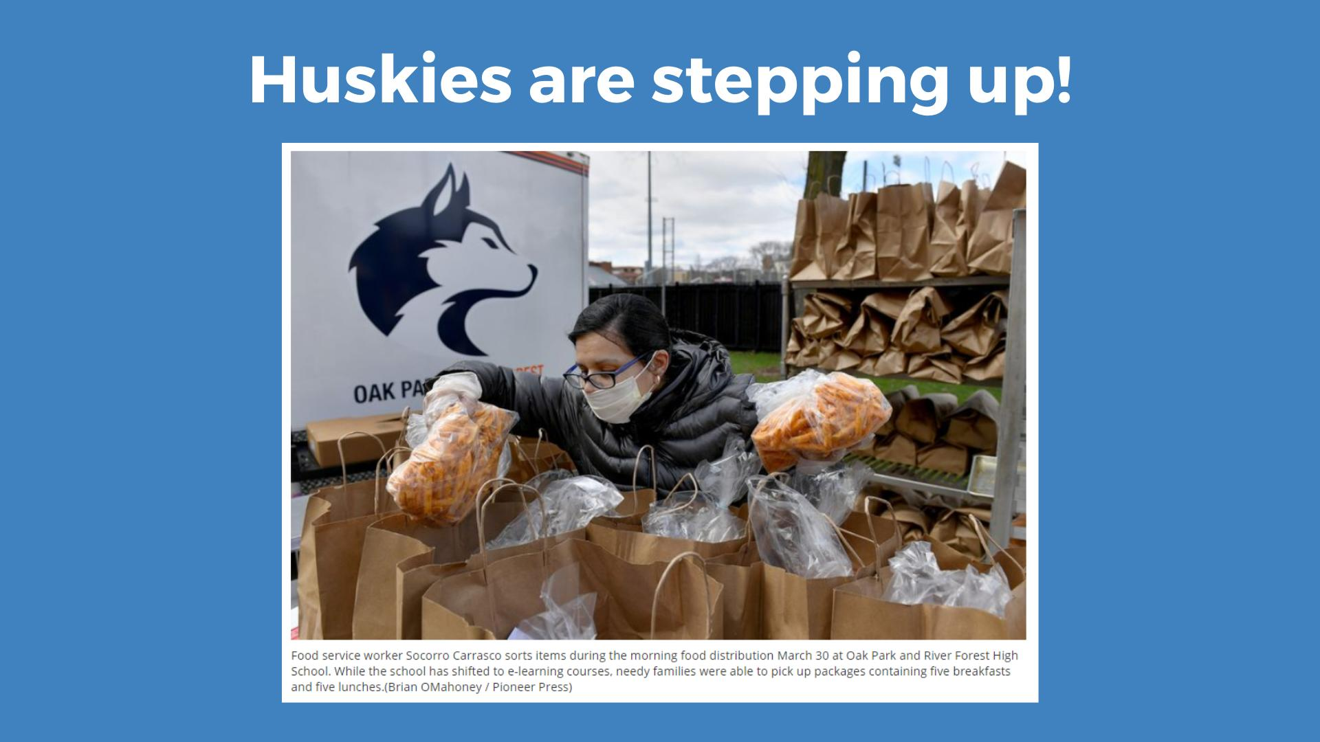 Huskies in the News